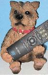Yorkshire Terrier hält Fernbedienung