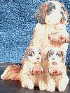 Saint Bernard Mom with 2 pups with Barrel